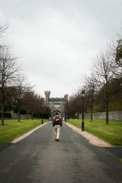 Gardens near Phoenix Park, Dublin